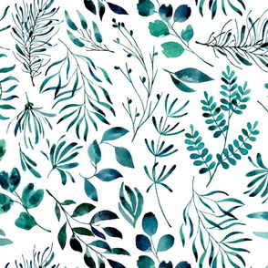 Teal leaves botanical foliage nature ferns on white background