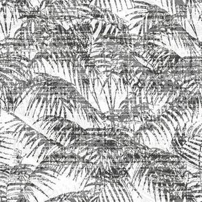 palm tree black on white