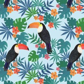 just a little toucan