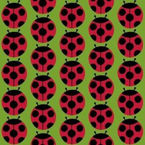 ladybugs green
