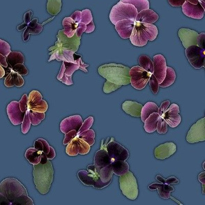 Moody Violas On Denim Blue