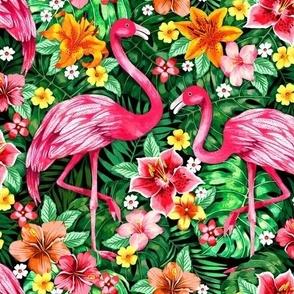 Tropical flamingos