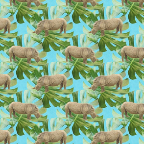 Jungle rhino