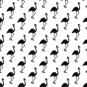 Flamingo 1 White Black