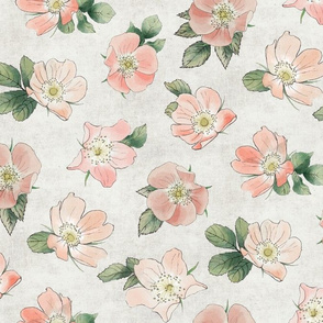 Wild Rose on White Linen, Coral Blush Large Non-directional Floral