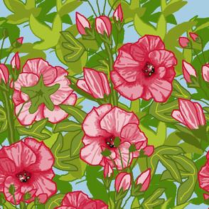 Hibiscus Bohemian Paradise  7c