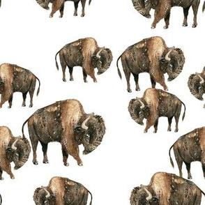Bison Herd - Smaller Scale