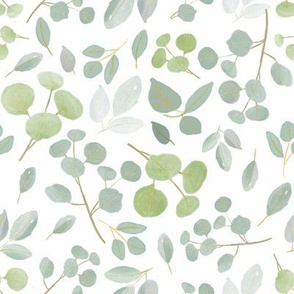 eucalyptus l