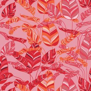 Tropical Boho in pinks