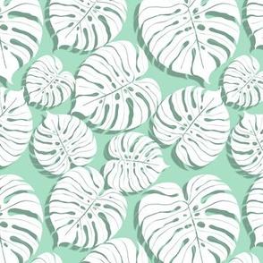 Palm monstera pattern