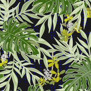Yves Jardin - Night - Tropical Oasis Paradise