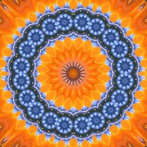 Bohemian Paradise - Bird Of Paradise, Full Circle