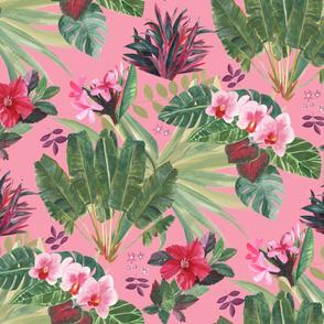 Lush Tropical Bohemian-Pink