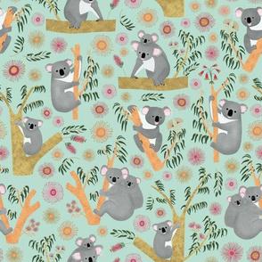 Koalas sitting in Gum Tree
