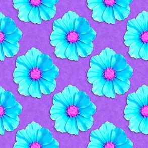 Vivid Cosmos Flowers