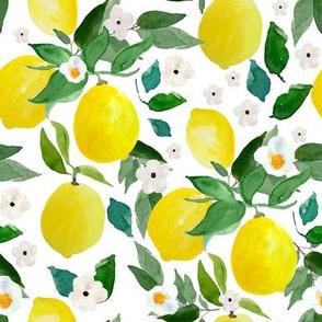 """8"""" Lemons White"""