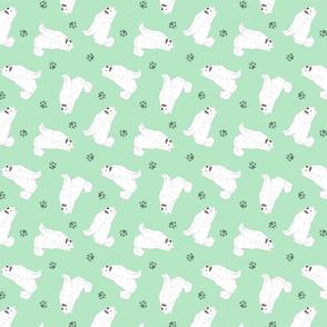 Tiny Samoyed - green