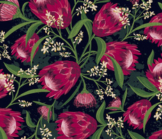 Sugarbush - Protea Floral Black Large Scale