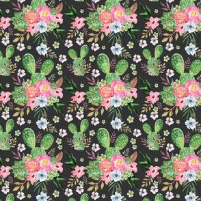 cactus with dark background