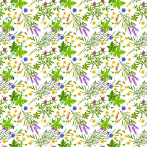 Colorful Herbs Flowers Pattern