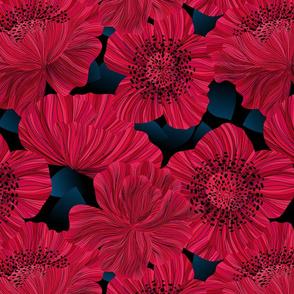 Poppies at Night - Moody