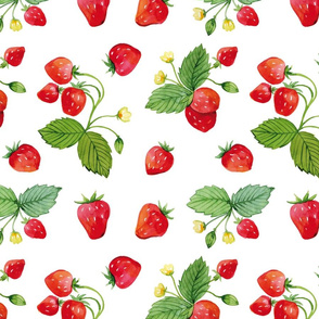 Strawberry Summers