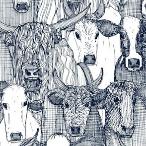 just cattle navy white