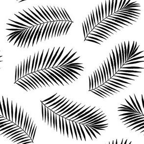 coconut palm leaves - medium scale black ink