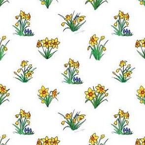 Yellow Daffodils - miniature