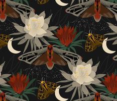 Midnight Gardens