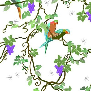 Parrots Among Grapevines