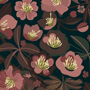 Moody helleborus | blush brown