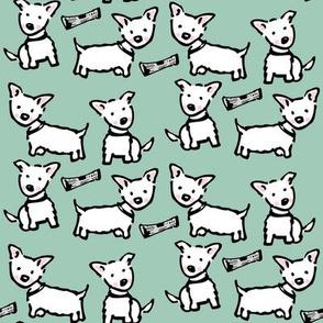 west highland white terrier: westie sea foam green