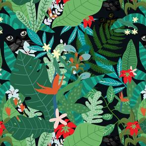 Tropical Inuendos Meow