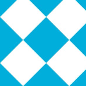 large white and turquoise check