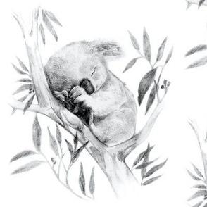 Large Sleepy Koala, Black and White