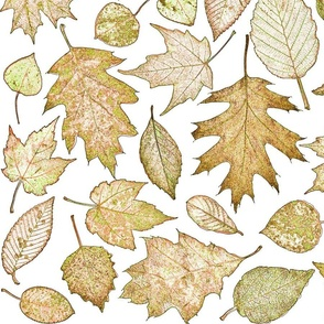 leaf etchings in copper colors