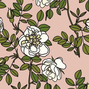 Climbing roses on blush pink