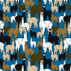 Alpacas Large Group With Blue Background