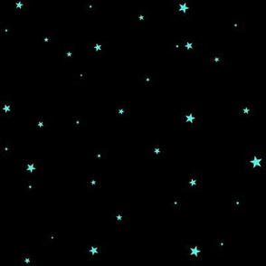 woollypetals starry eyed black with robin egg blue stars