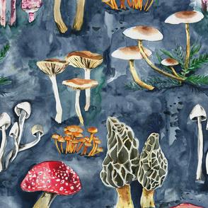 Mushroom Collection {Large}