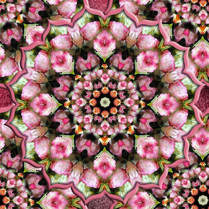Pink Tea Rose Kaleidoscope Fabric