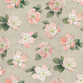 Wild Rose Neutral Linen Coral Blush Grey beigh large non-directional floral