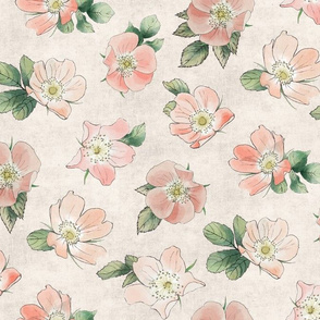 Wild Rose on Blush Linen, girl baby kids large flower non-directional