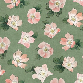Wild Rose on Sage Linen, flower, hand drawn, pink, green, floral, baby girl, kids, nursery, large scale,  non-directional