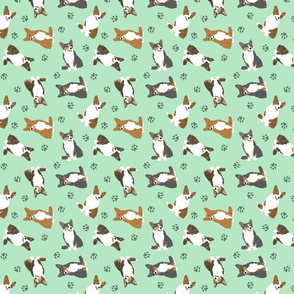 Tiny Cardigan Welsh Corgi - green