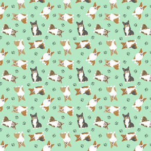 Tiny Pembroke Welsh Corgi - green