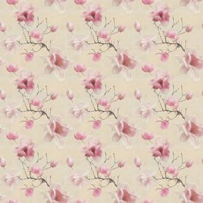 Magnificent magnolia - pretty blush pink floral blooms
