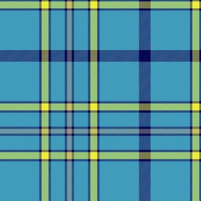 "Alaska ancient flag tartan, 6"" bright"