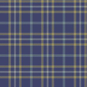"""Alaska modern flag tartan, 3"""" weathered"""